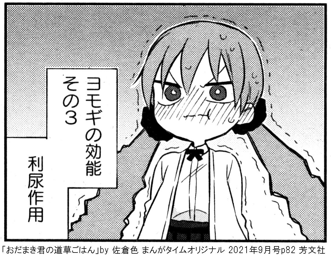 f:id:tanaka-minoru-fake:20210730120641j:plain