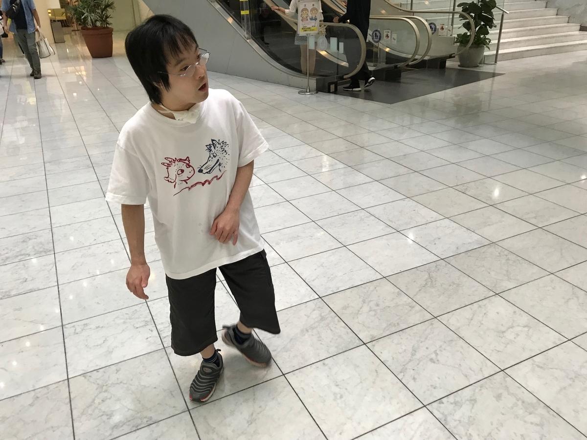 f:id:tanaka-shinichi:20190921191704j:plain