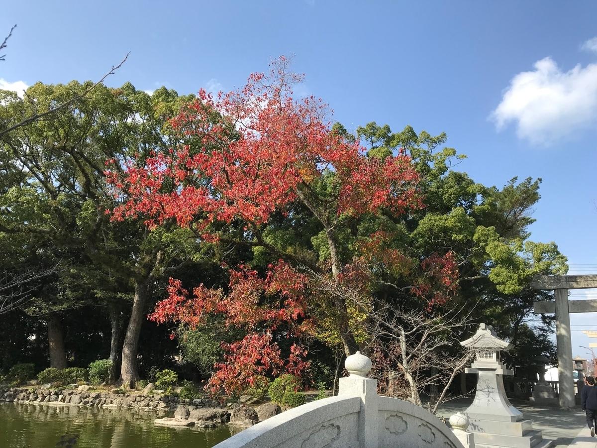f:id:tanaka-shinichi:20191111171342j:plain