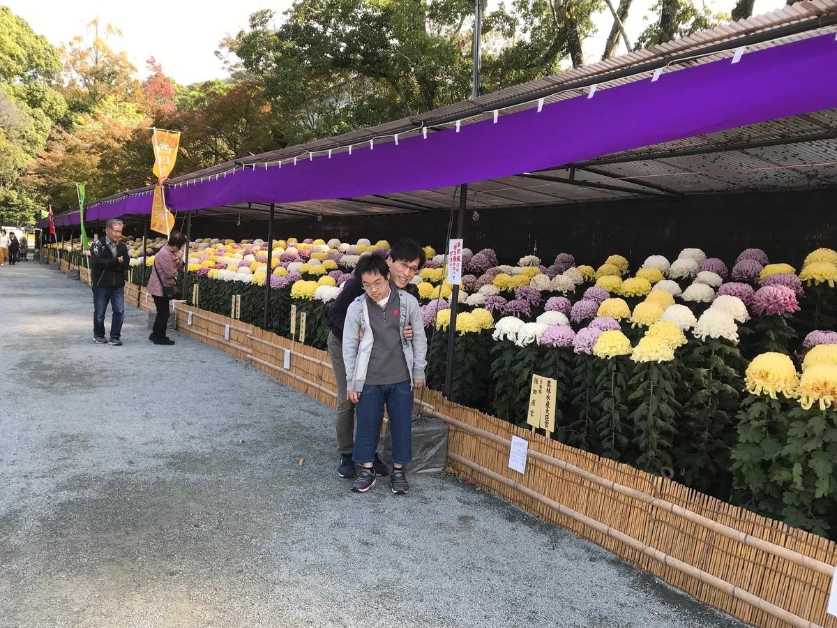 f:id:tanaka-shinichi:20191111171606j:plain