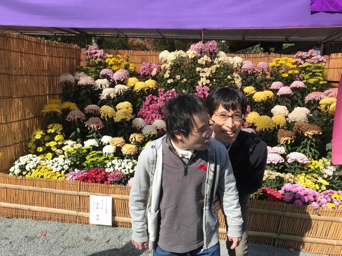 f:id:tanaka-shinichi:20191111171821j:plain