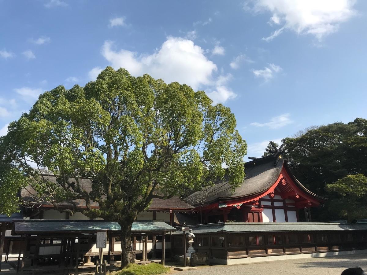 f:id:tanaka-shinichi:20191111172229j:plain