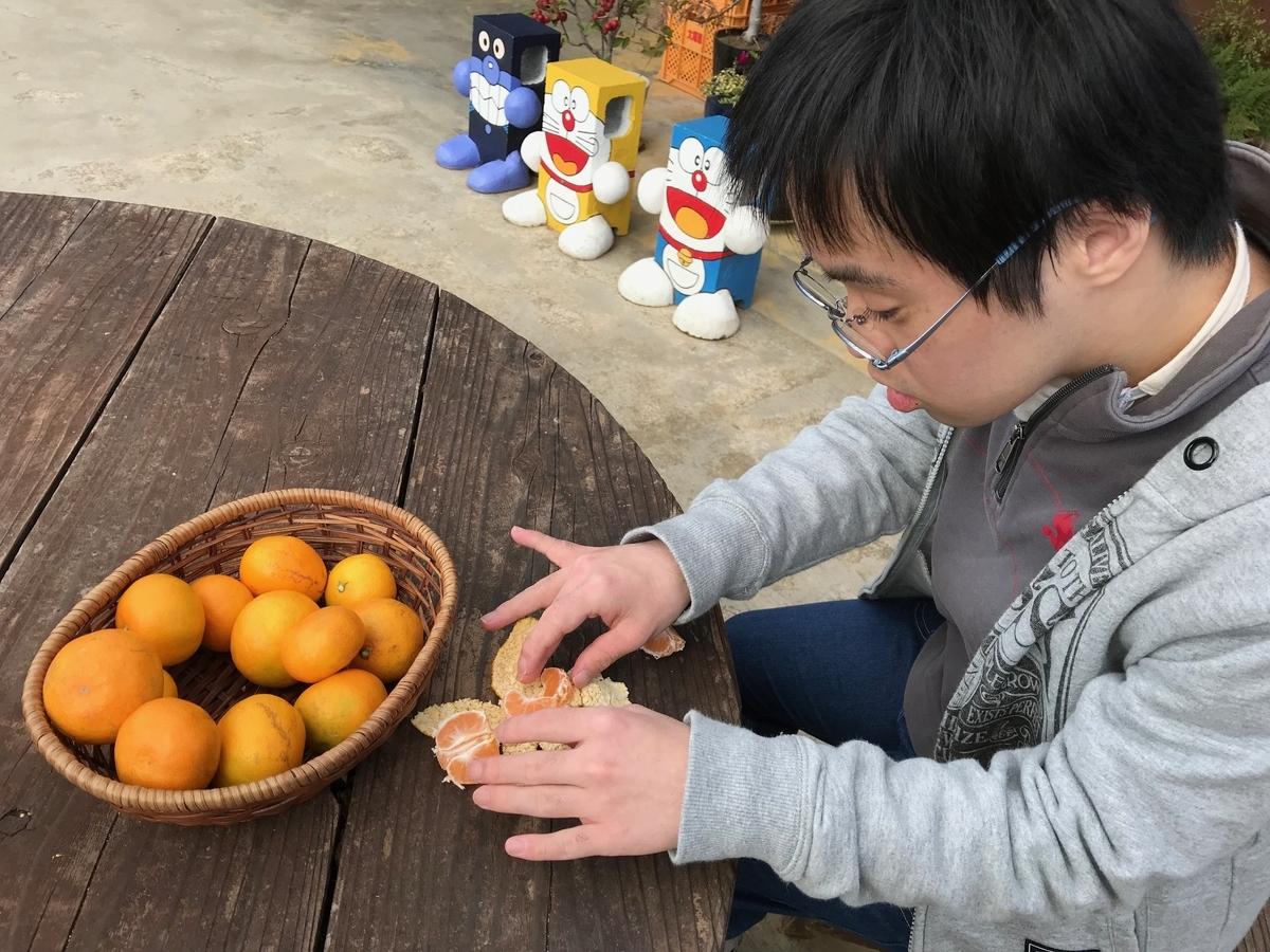 f:id:tanaka-shinichi:20191112171940j:plain