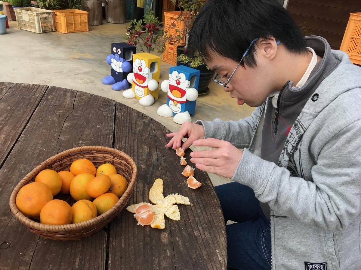 f:id:tanaka-shinichi:20191112172013j:plain