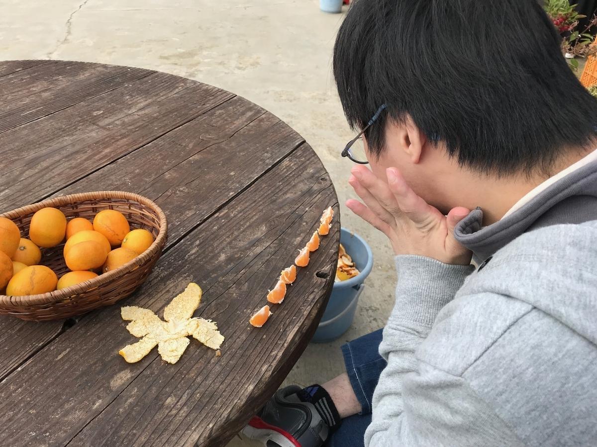 f:id:tanaka-shinichi:20191112172126j:plain