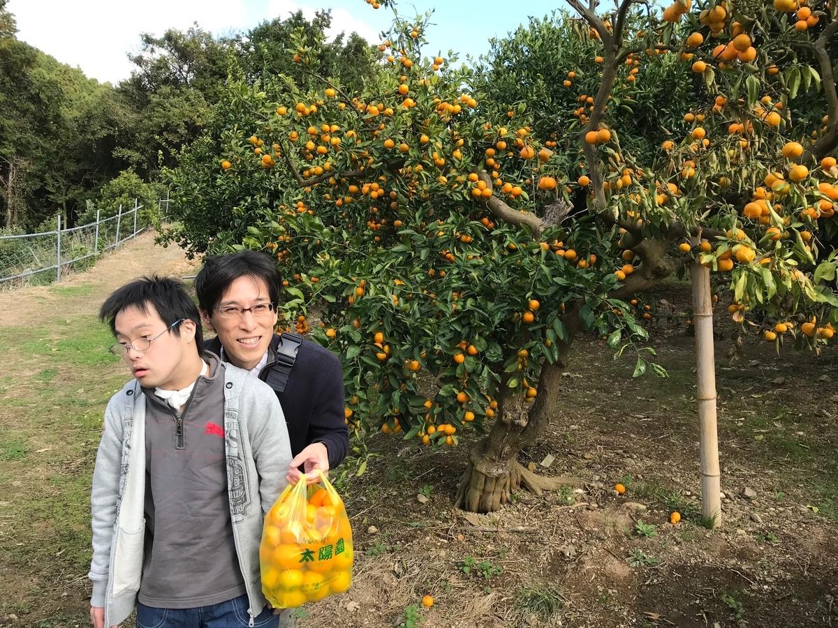 f:id:tanaka-shinichi:20191112172516j:plain
