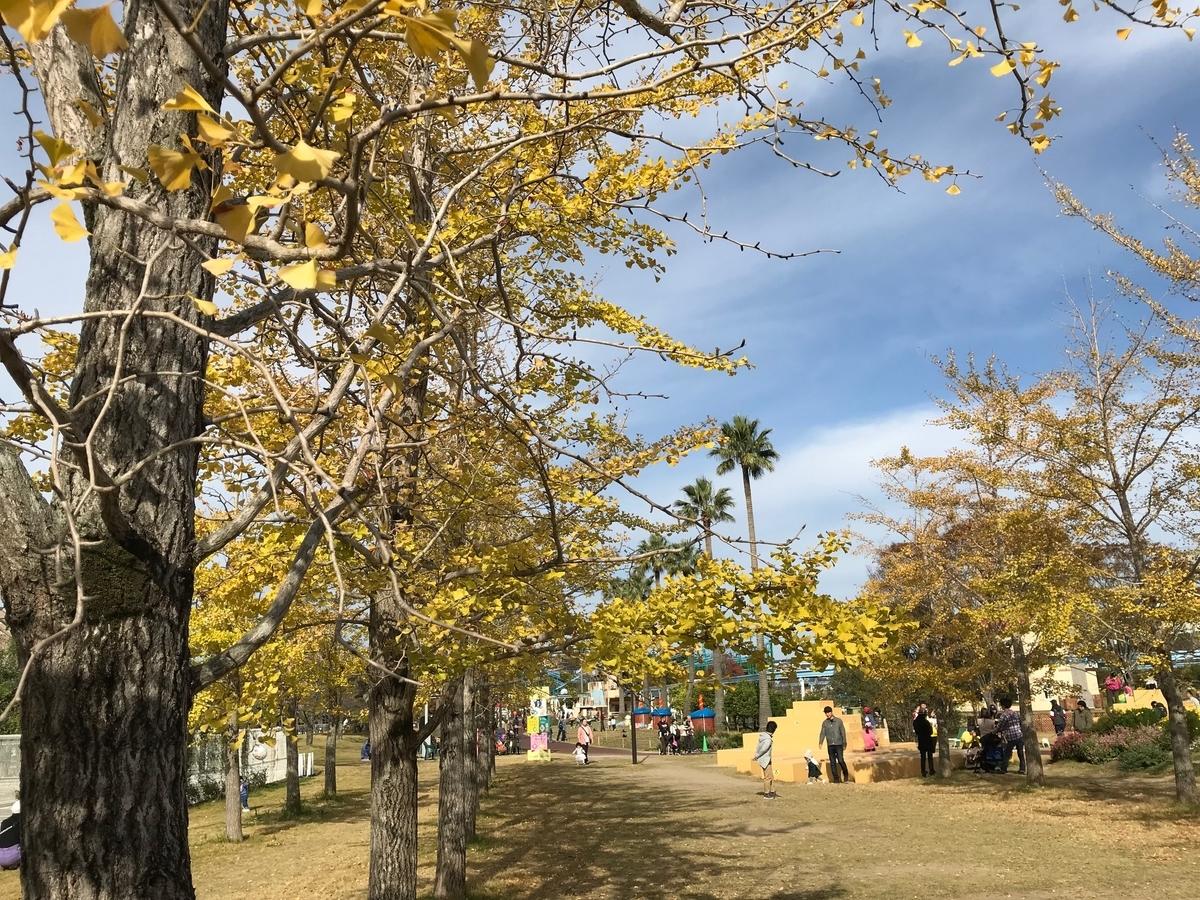 f:id:tanaka-shinichi:20191117182346j:plain