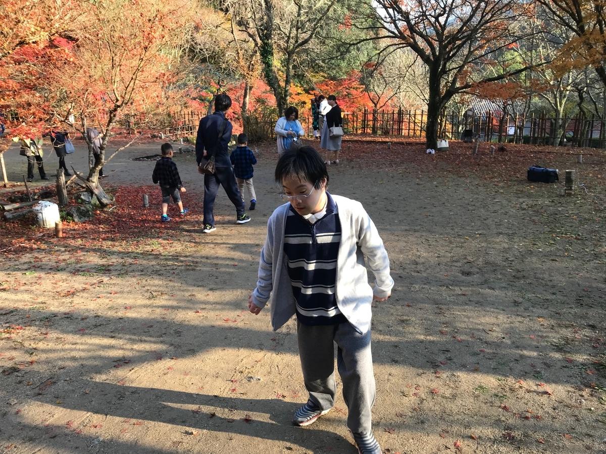 f:id:tanaka-shinichi:20191125183108j:plain
