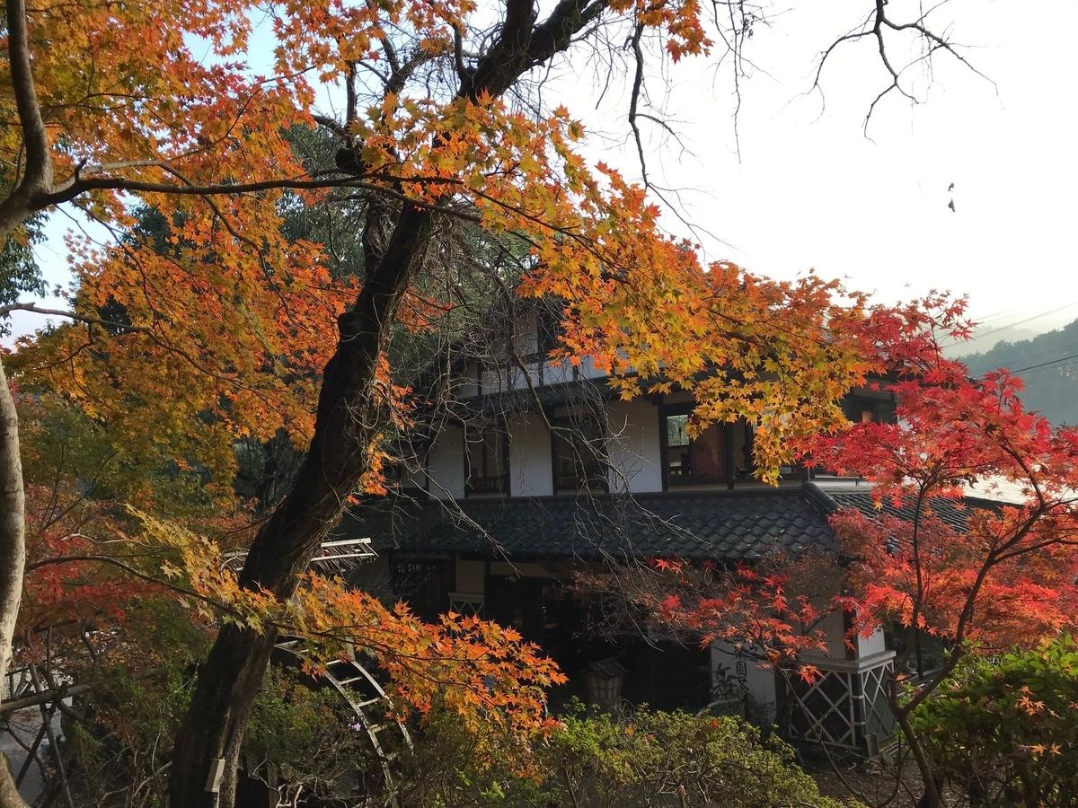 f:id:tanaka-shinichi:20191125183530j:plain