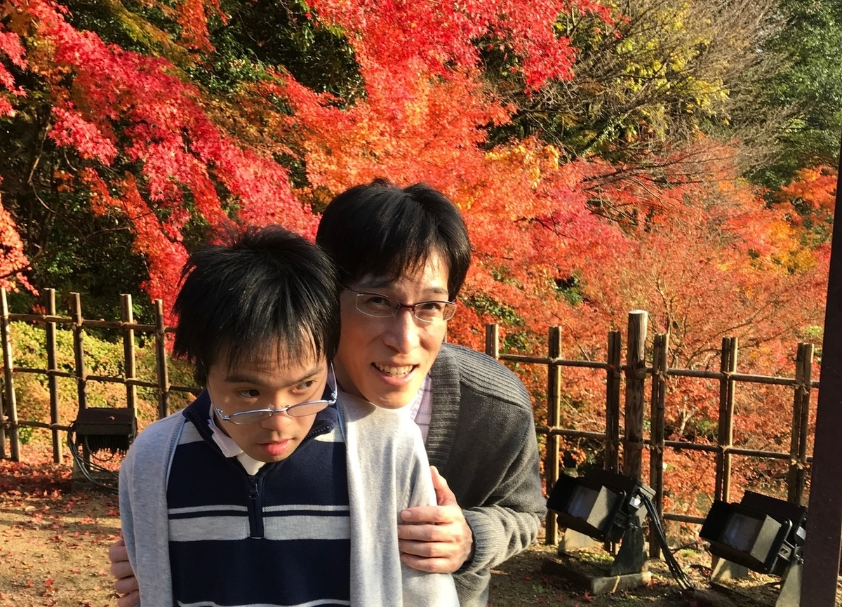 f:id:tanaka-shinichi:20191231184617j:plain