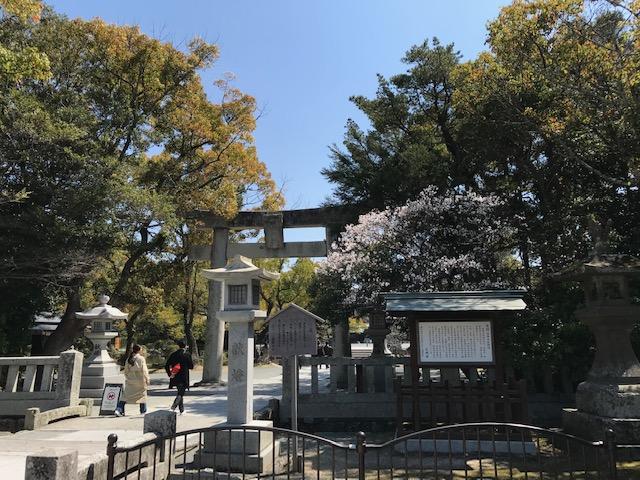f:id:tanaka-shinichi:20200326170501j:plain