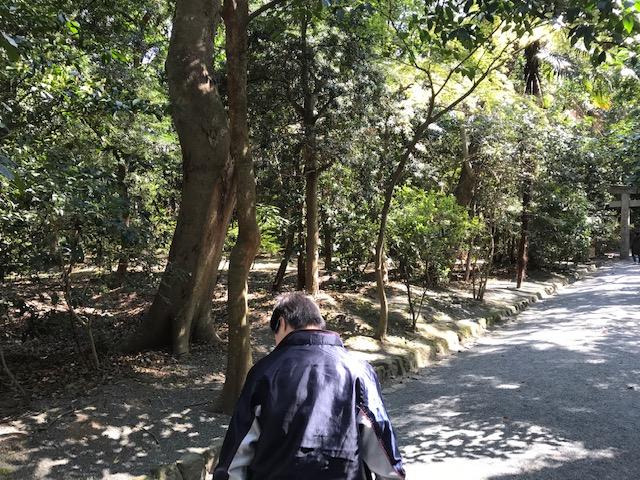 f:id:tanaka-shinichi:20200326170715j:plain