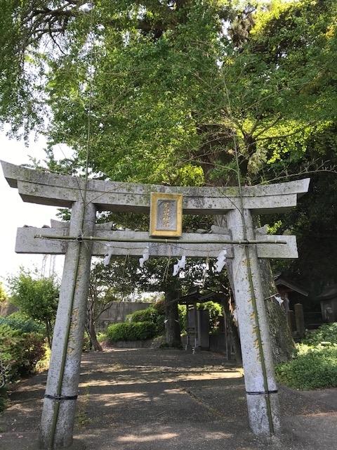 f:id:tanaka-shinichi:20200506192041j:plain