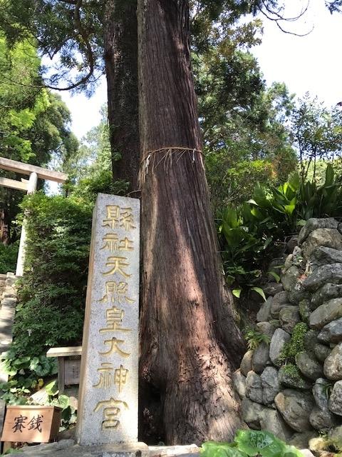 f:id:tanaka-shinichi:20200506192147j:plain