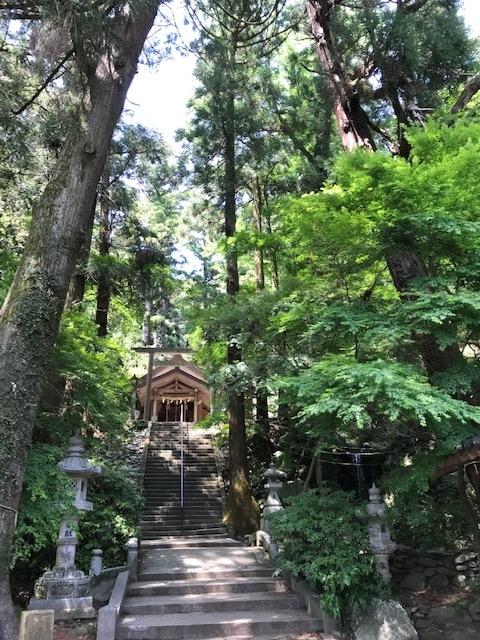 f:id:tanaka-shinichi:20200506192227j:plain