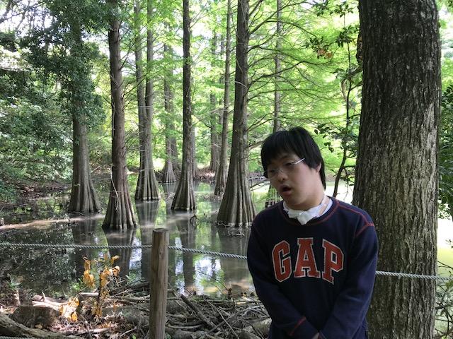f:id:tanaka-shinichi:20200521182226j:plain