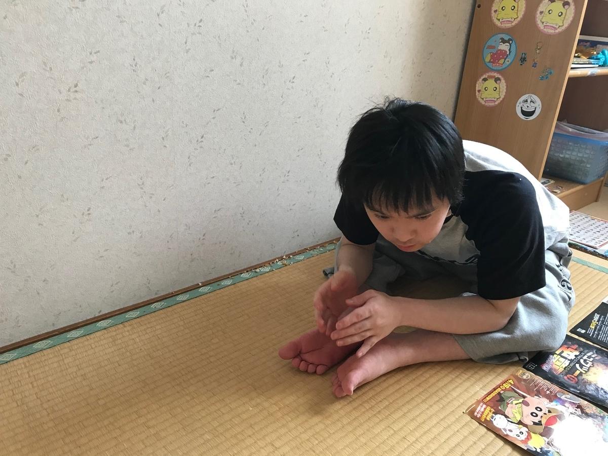f:id:tanaka-shinichi:20200529184707j:plain