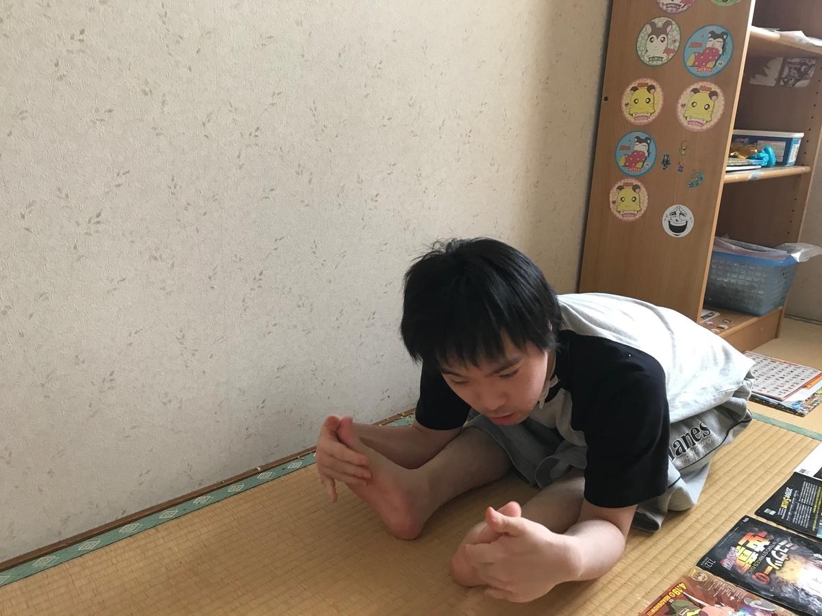 f:id:tanaka-shinichi:20200529184728j:plain