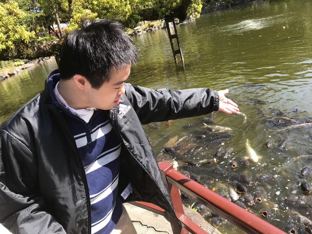 f:id:tanaka-shinichi:20210408174246j:plain