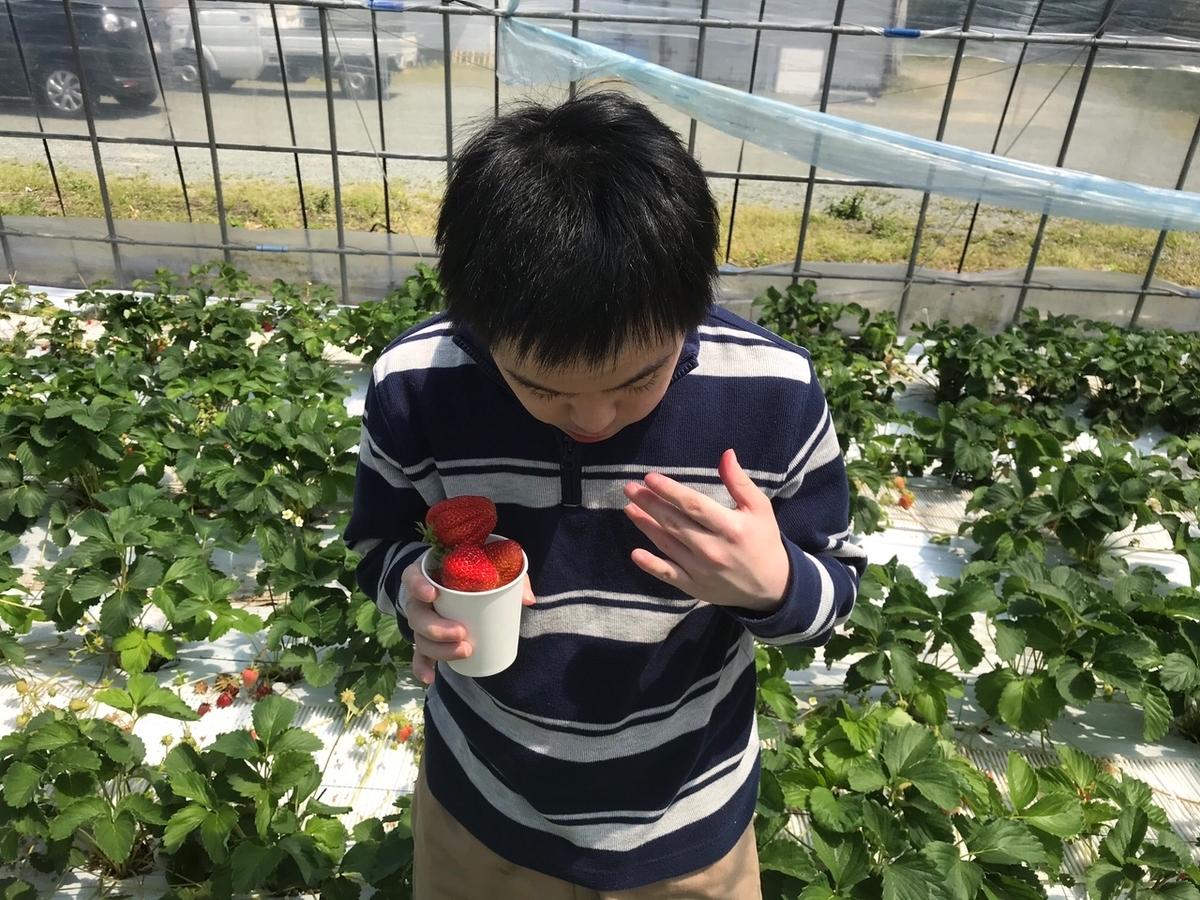 f:id:tanaka-shinichi:20210408180327j:plain
