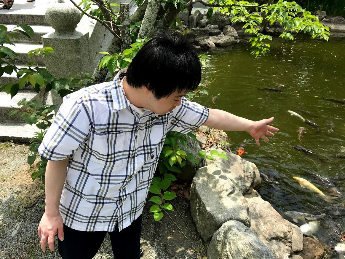 f:id:tanaka-shinichi:20210531235045j:plain