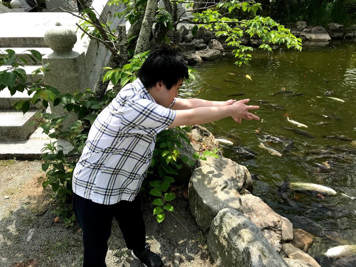 f:id:tanaka-shinichi:20210531235116j:plain