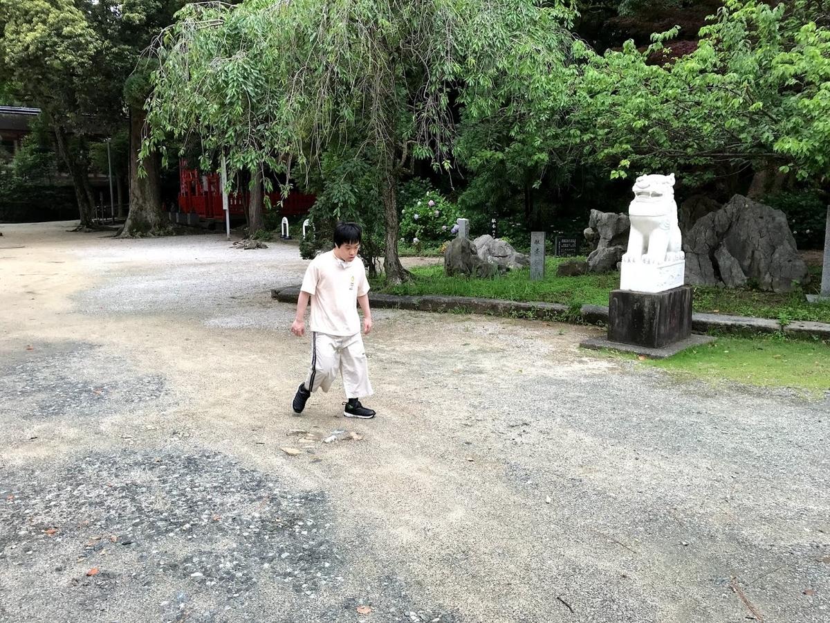 f:id:tanaka-shinichi:20210618180602j:plain