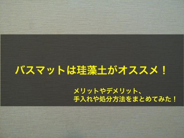 f:id:tanakayuuki0104:20190508050702j:plain