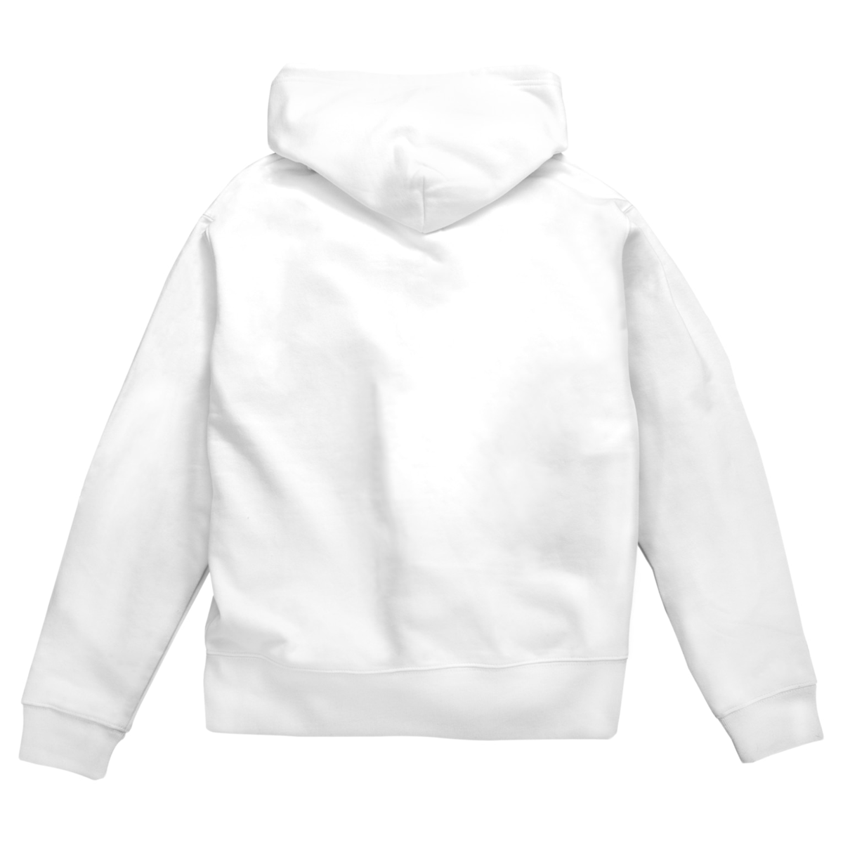zip-hoodie1-back