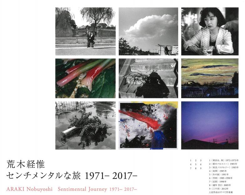 f:id:tanazashi:20170612173127p:plain