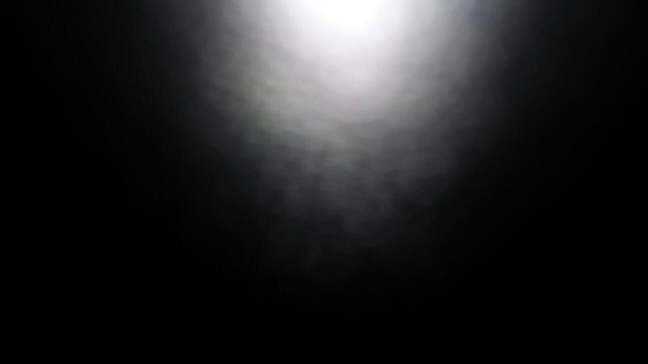 f:id:tanba-hokkori-noen:20170605004827j:image