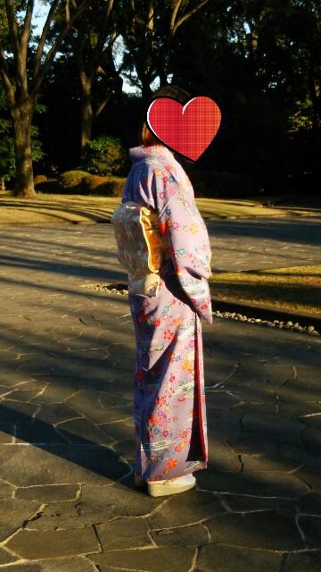 f:id:tane_kimono:20170101205809j:plain:w300