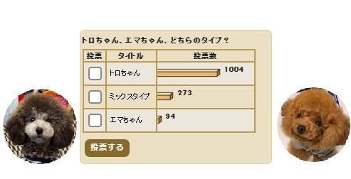 f:id:tanegashimapi:20210203204104j:plain