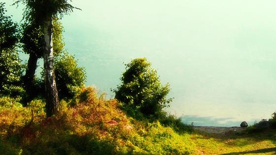 f:id:tanemori:20100404104210j:image