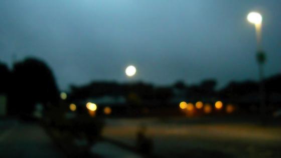 f:id:tanemori:20140105215722j:image