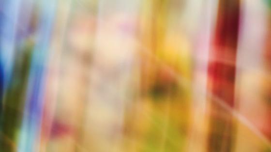 f:id:tanemori:20140216123706j:image