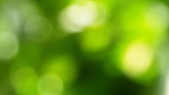 f:id:tanemori:20140302125942j:image