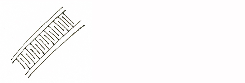 f:id:tanglefan:20200120220322j:plain