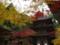 京都新聞写真コンテスト 西明寺の秋