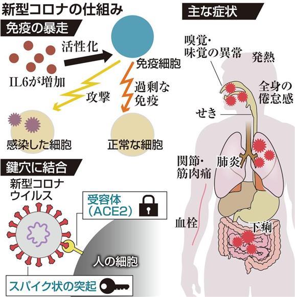 f:id:tanigawa:20200504015014j:plain