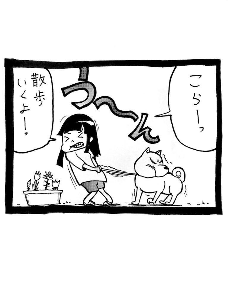 f:id:tanigawa_kagerou:20170702175808j:image