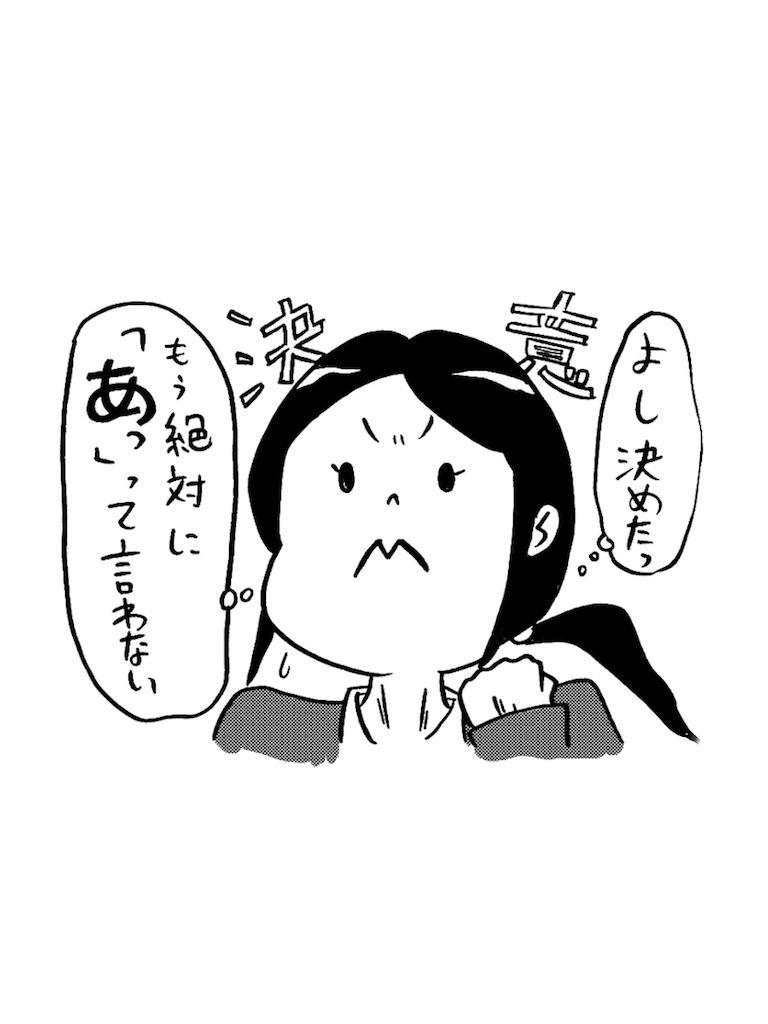 f:id:tanigawa_kagerou:20171109204405j:image