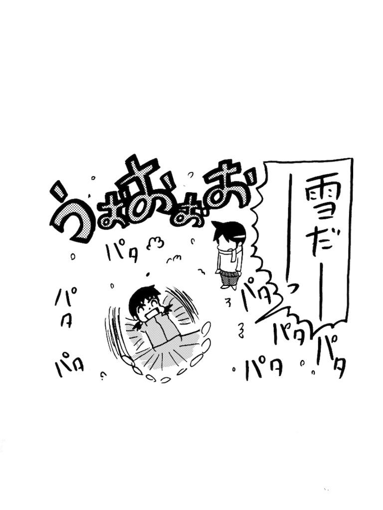 f:id:tanigawa_kagerou:20171209173013j:image