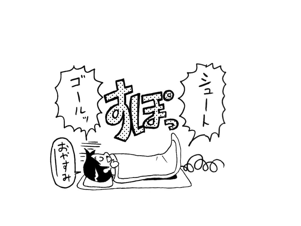 f:id:tanigawa_kagerou:20180708104723p:image