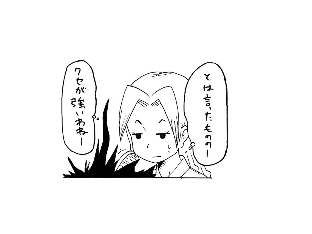 f:id:tanigawa_kagerou:20180715111854p:image