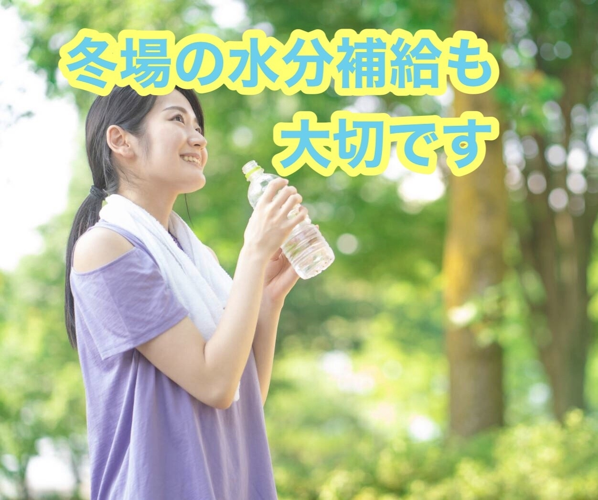 f:id:tanikawaryu_sou:20201215091410j:plain