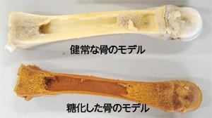 f:id:tanikawaryu_sou:20210220114502j:image