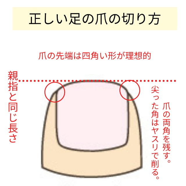 f:id:tanikawaryu_sou:20210324103645j:image