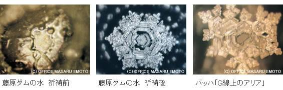 f:id:tanikawaryu_sou:20210918100410j:image