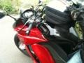 ダチョウがバイクで旅に出るよ